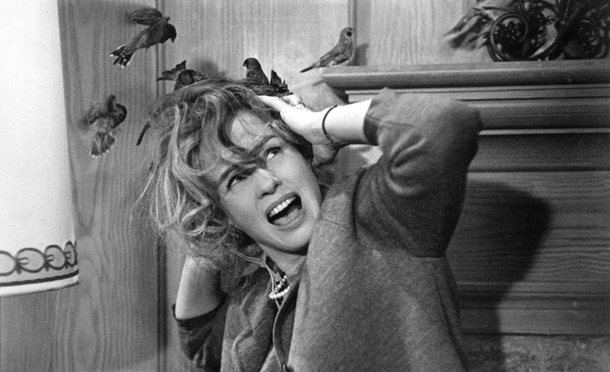 5 najbardziej kultowych filmów Alfreda Hitchcocka