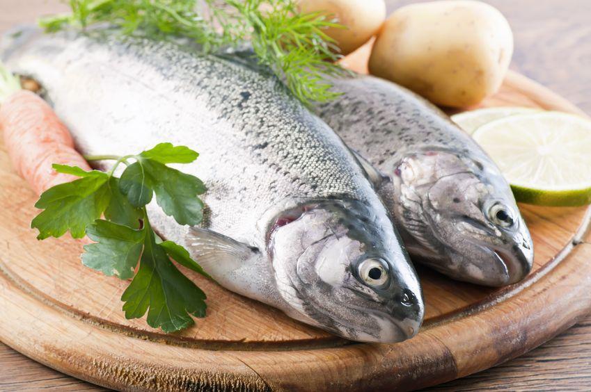 Ryby kontra białaczka