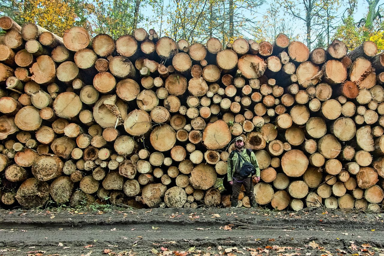 Adam Wajrak od 20 lat mieszka w Puszczy Białowieskiej (Fot. Adam Wajrak/Agencja Gazeta)