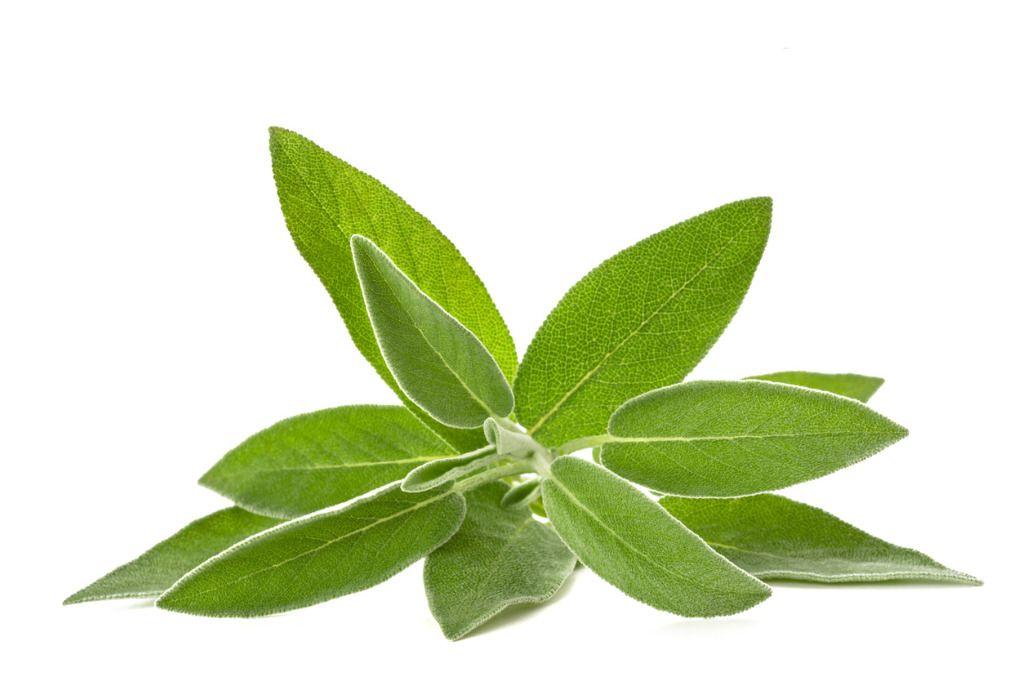 Kosmetyki naturalne: hydrolat - co to takiego?