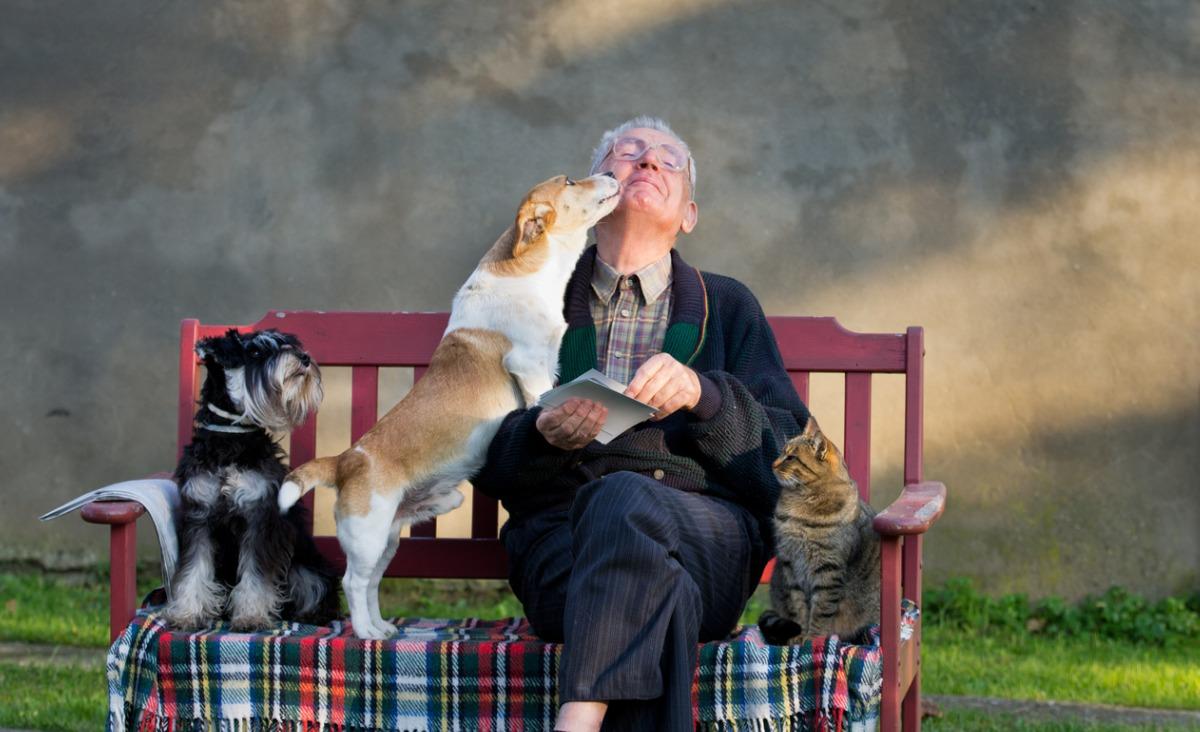 Czy zwierzęta mogą być naszymi przyjaciółmi?