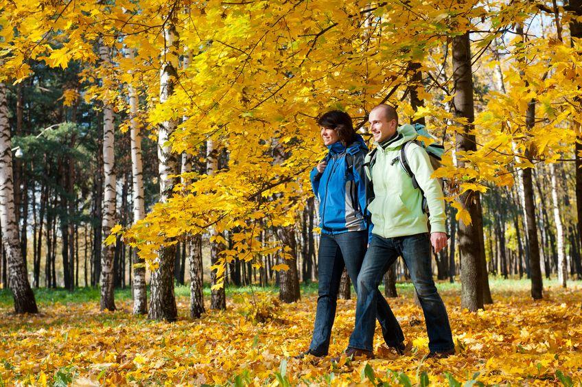 Porady na zdrowa jesien