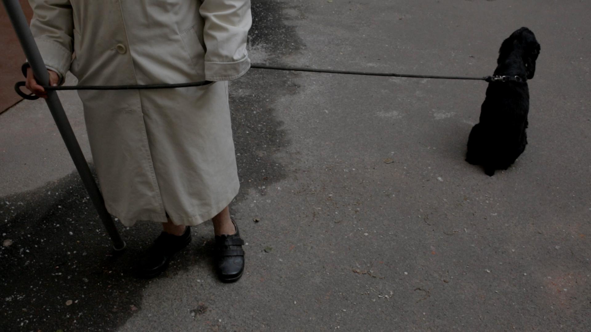 Pandemia okiem polskich dokumentalistów na 18. Millennium Docs Against Gravity