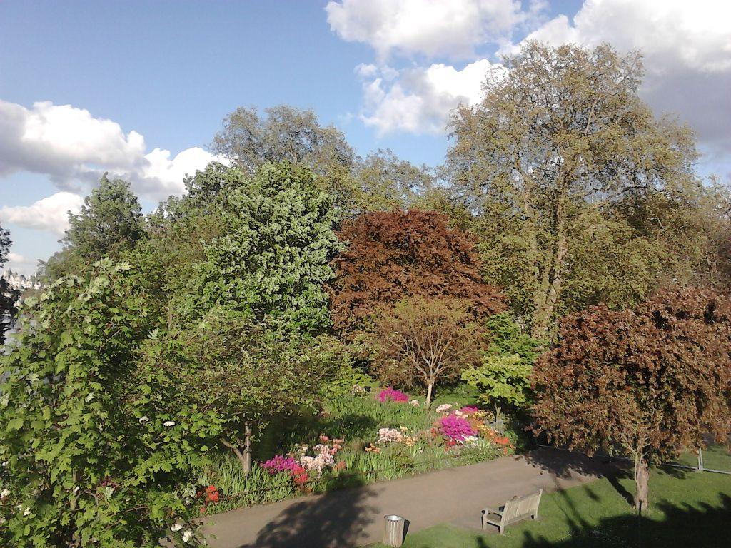 Jak Adam i Ewa w St. Jamess Park w Londynie