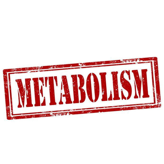 Metabolizm na najwyższych obrotach? To możliwe!