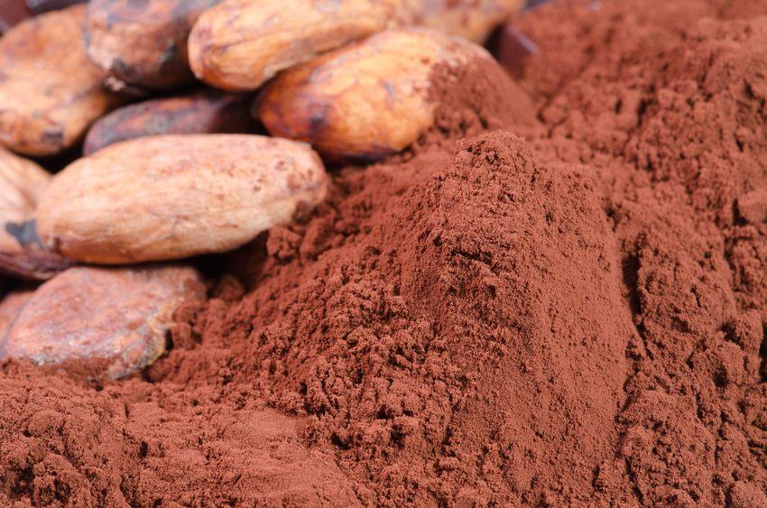 Kakao-Zwierciadlo.pl