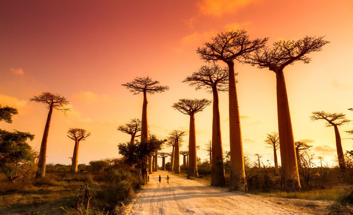 Podróżnik Grzegorz Kępski opowiada o miłości do Afryki i zdradza swój przepis na szczęście