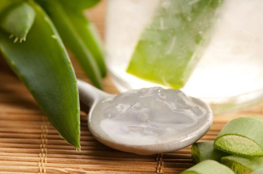 Aloes- ukojenie dla wrażliwej skóry