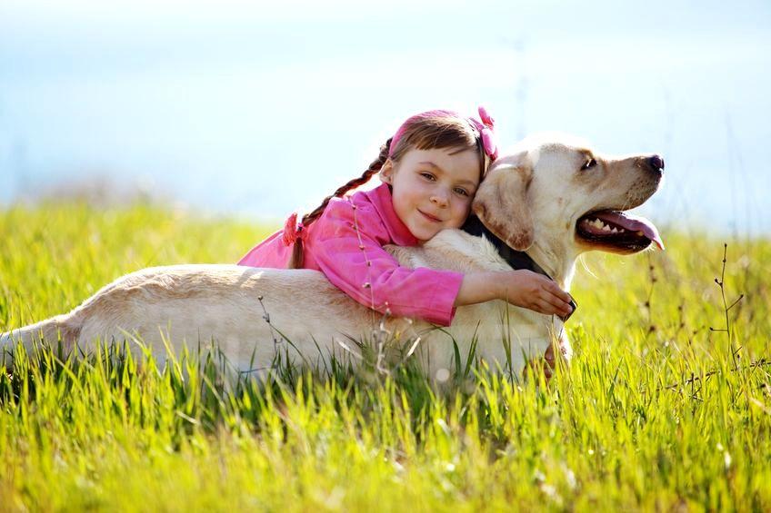 Czy twoje dziecko boi się psów?