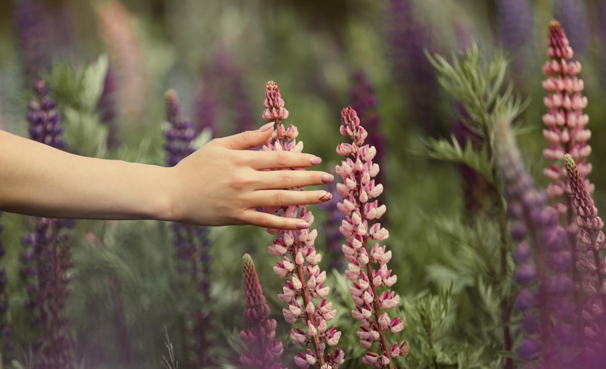 Aromaterapia. Jak pachnie twój nastrój?