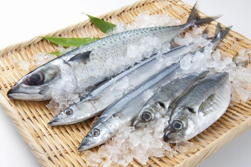 6 najważniejszych wskazówek dla rybożerców!