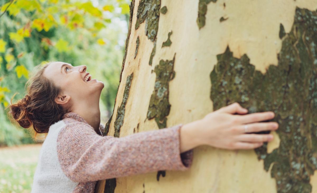 Doładuj baterie w lesie - terapia leśna i jej dobroczynne efekty