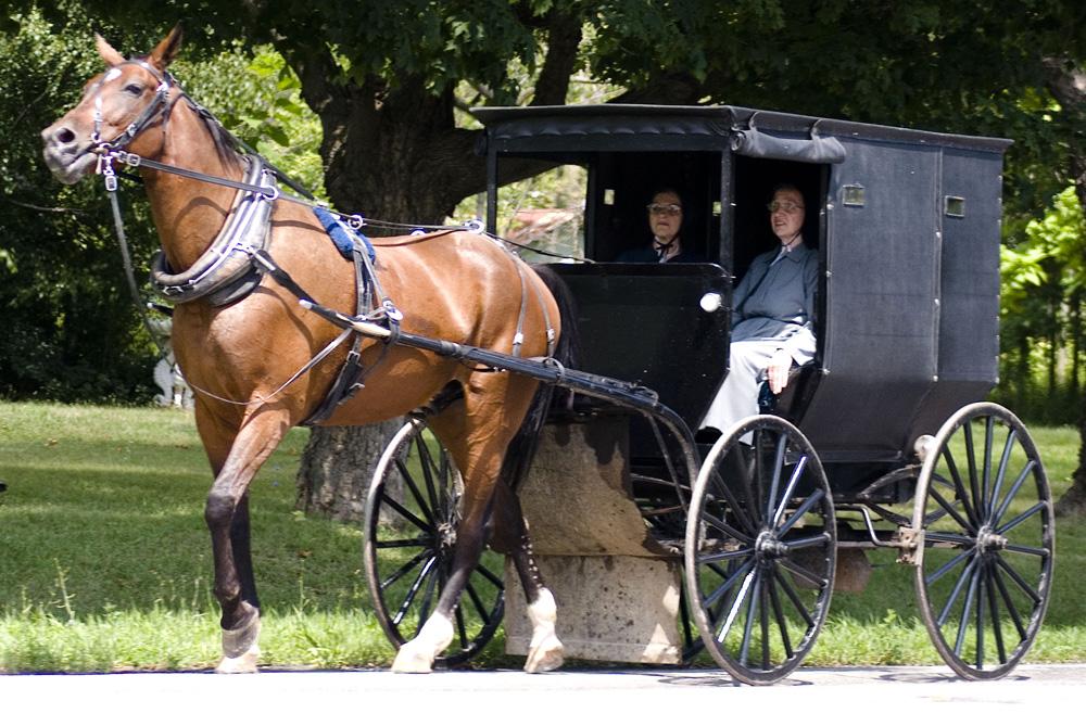 Życie Amiszów