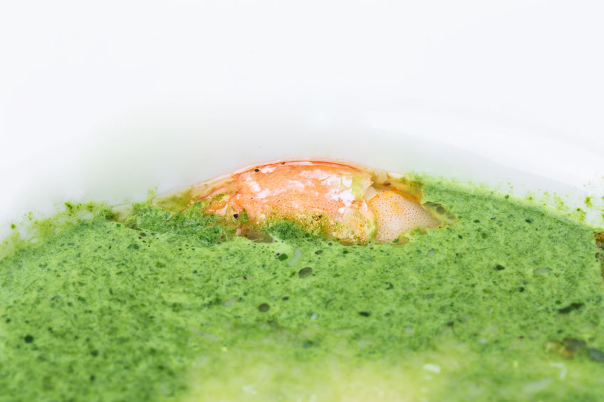 Karaibska zupa ziołowa