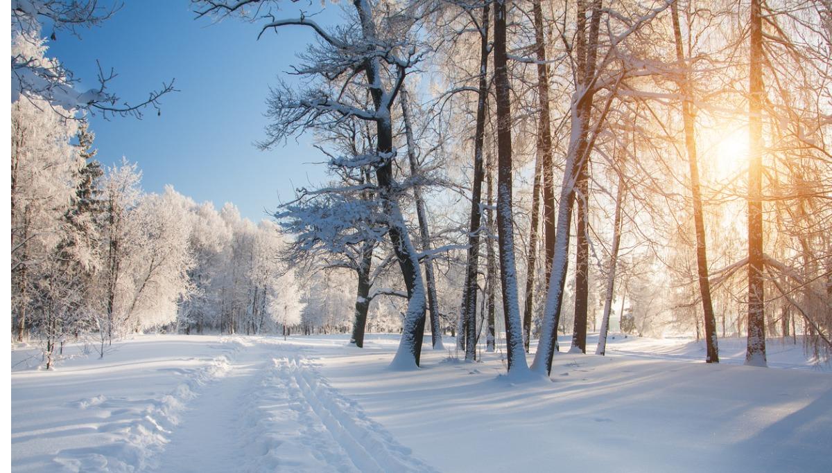 Tęsknisz za zimowym krajobrazem? My tak