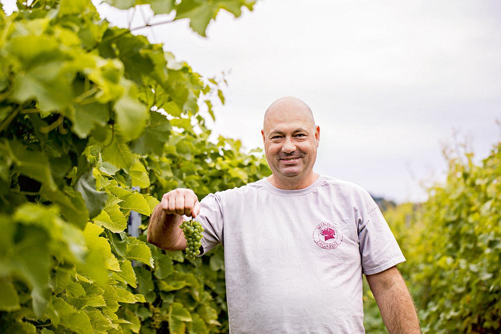 Polskie winnice - dla wytrawnych turystów