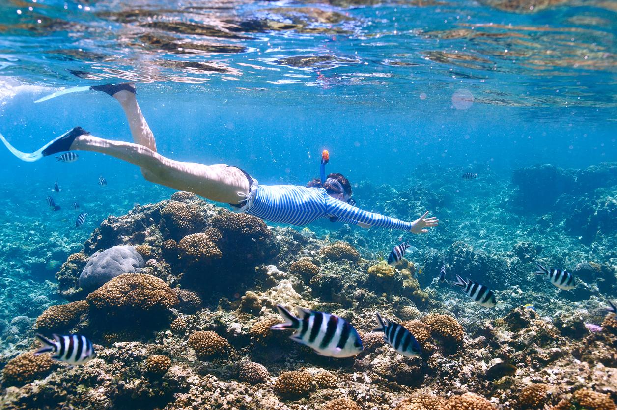 Ekologiczny archipelag marzeń: Seszele