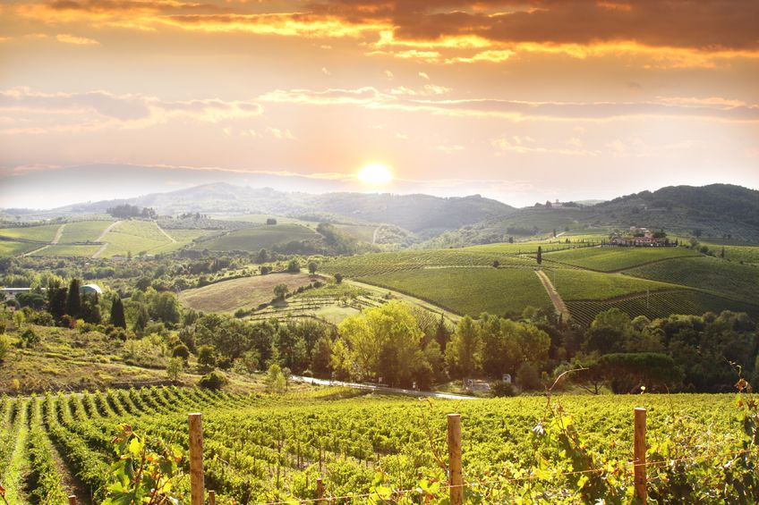 Top 10 Wine Destinations in Europe