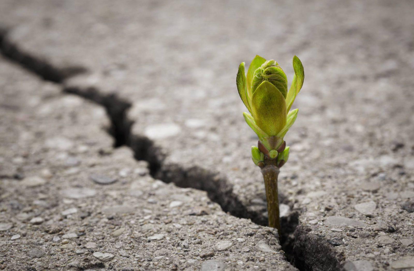 Tylko połączenie nadziei z wiarą pchnie nas do działania. (Fot. iStock)