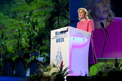 Światowy tydzień wody 2012