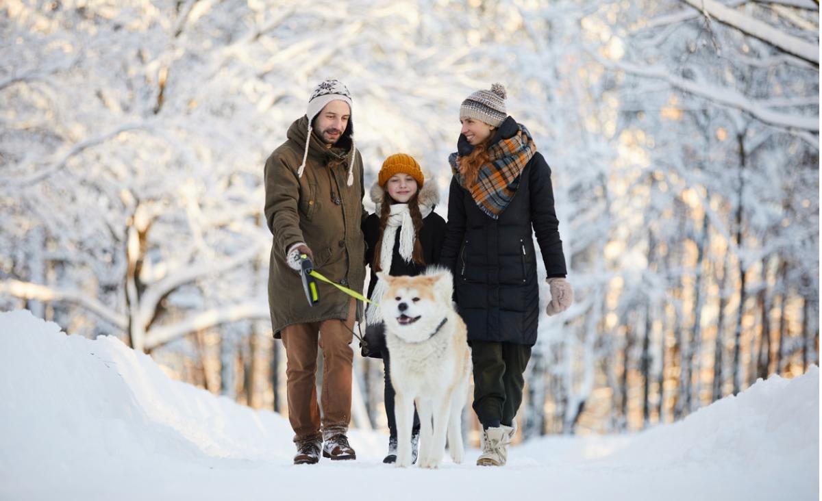Zamiast spędzać święta na kanapie, idź na spacer!