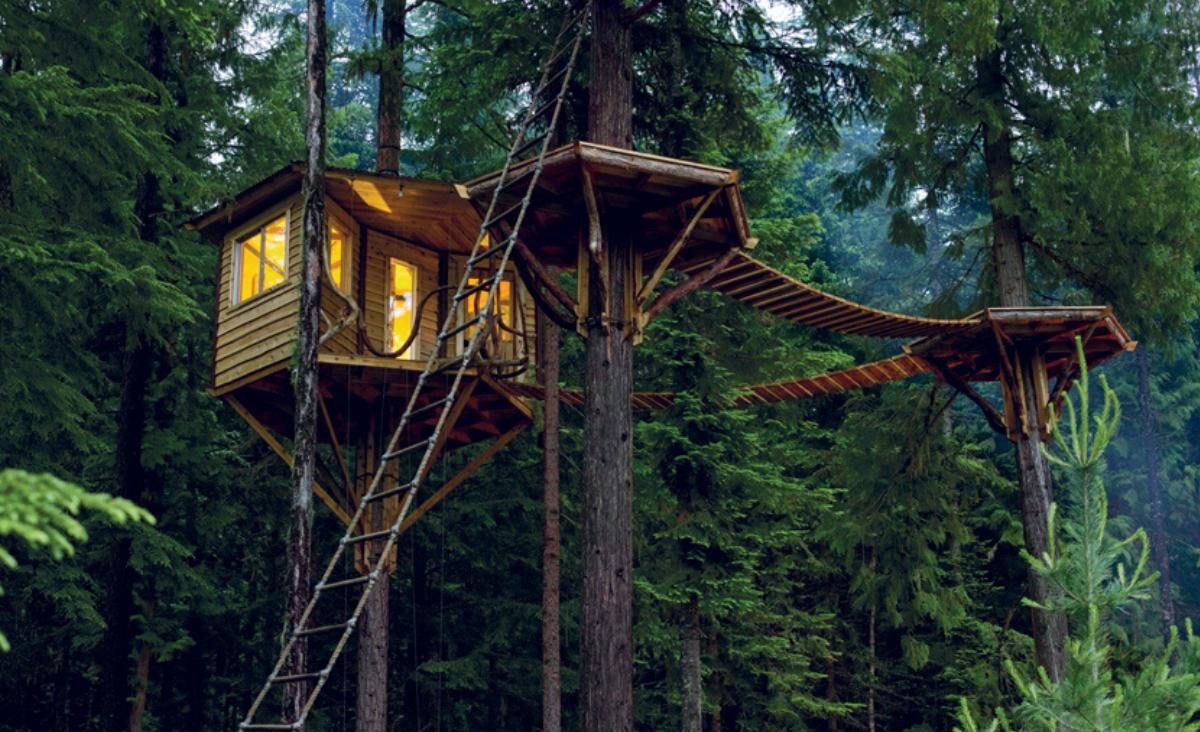 Domki na drzewie - namiastka dzieciństwa i odpoczynek w kontakcie z naturą