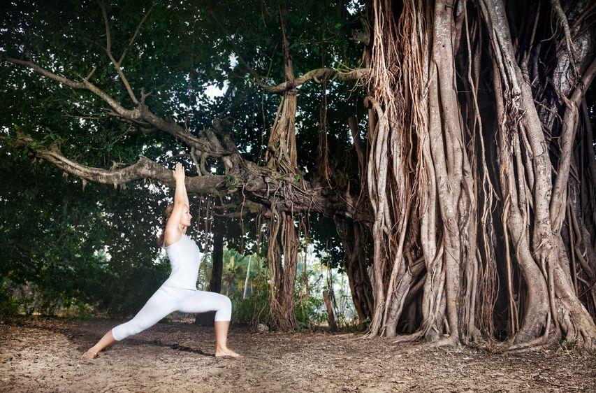 Pratikriya w praktyce pozycji jogi