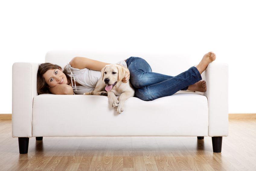 Czego człowiek moze nauczyć się od psa?