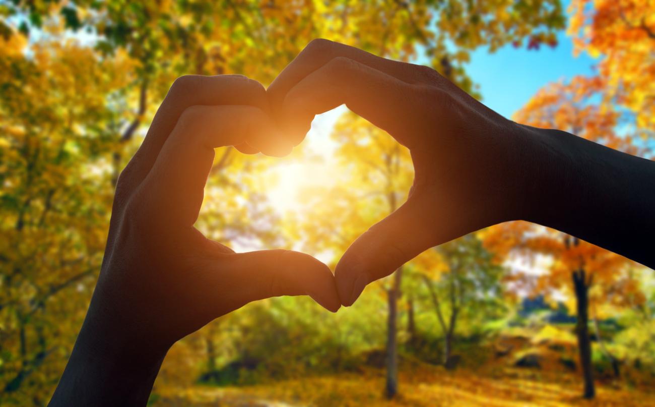 Kochasz słoneczną jesień? My też!