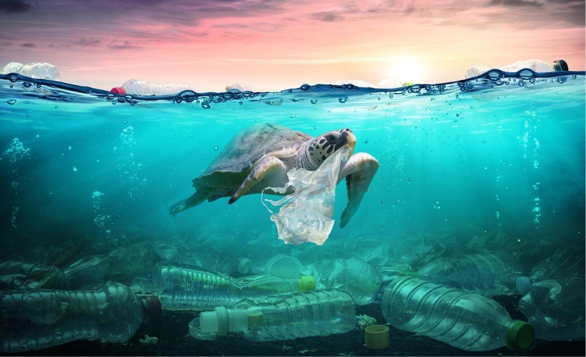 Jak się pozbyć nadmiaru plastiku? – Nadzieją może być nowy super-enzym