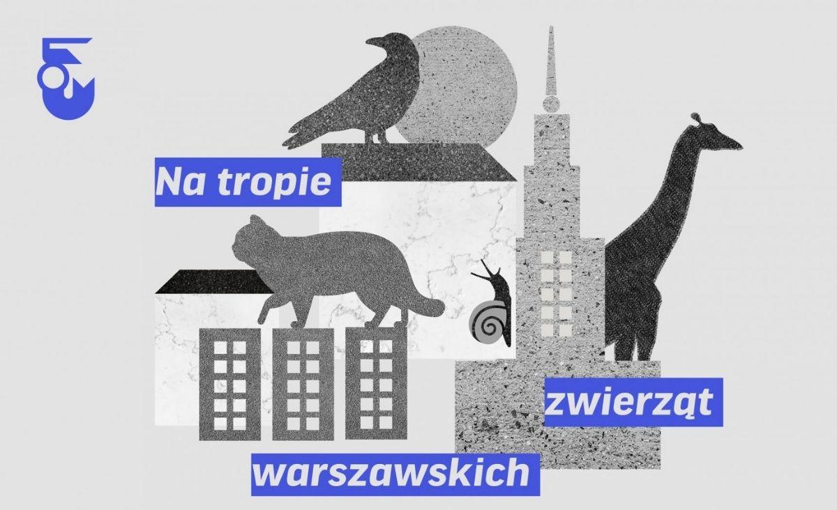 """Miejski ekosystem - """"Na tropie zwierząt warszawskich"""" w Muzeum Warszawy"""