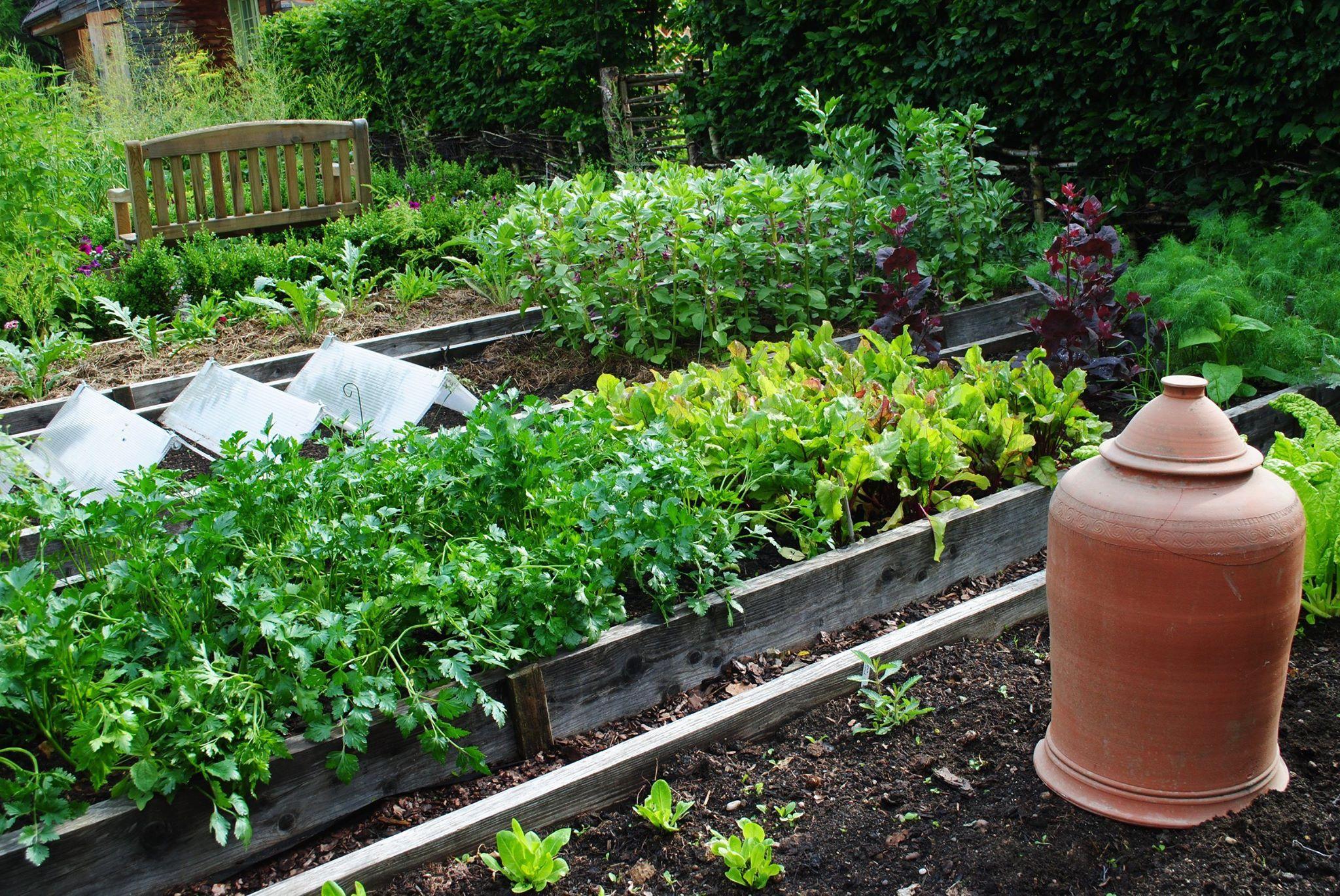 Ogrodniczka księcia Karola i jej zaczarowany ogród na Kaszubach