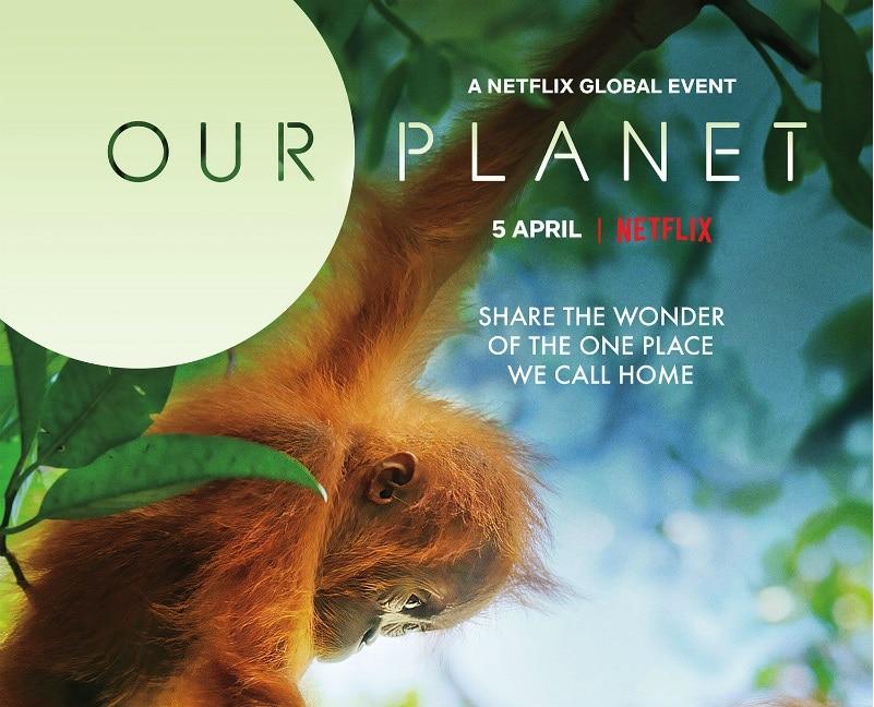 Nasza planeta - nowy serial dokumentalny Netfliksa