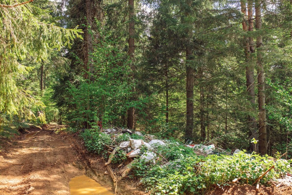 Ministerstwo wprowadzi znacznie wyższe kary za zaśmiecanie lasów!