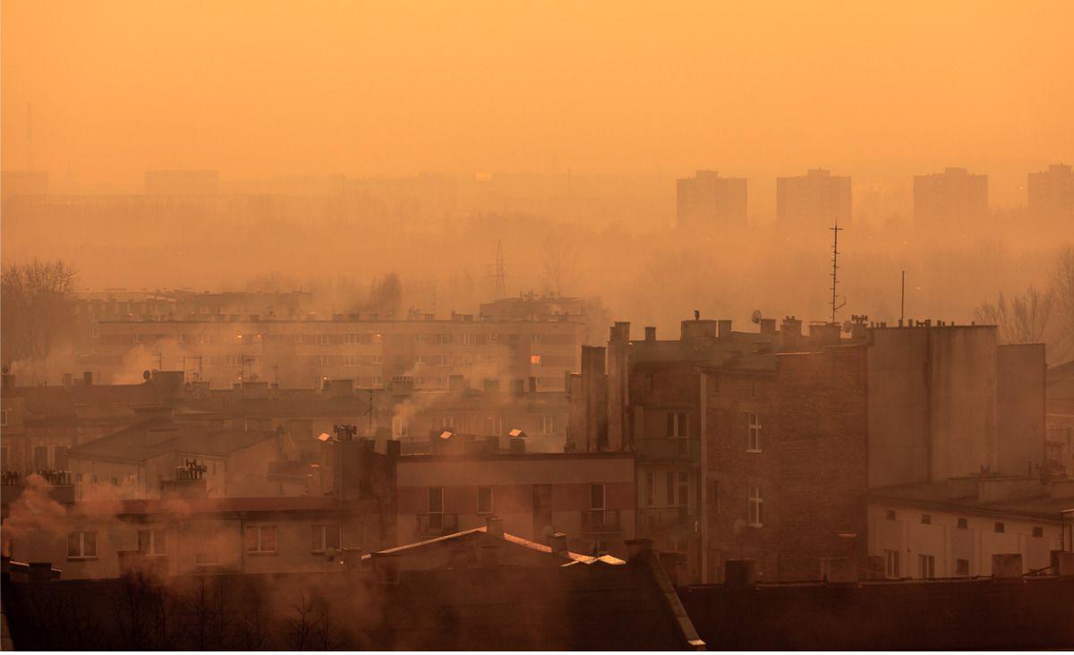 Zanieczyszczenie powietrza to plaga naszych czasów - rozmowa z autorką książki Uduszeni
