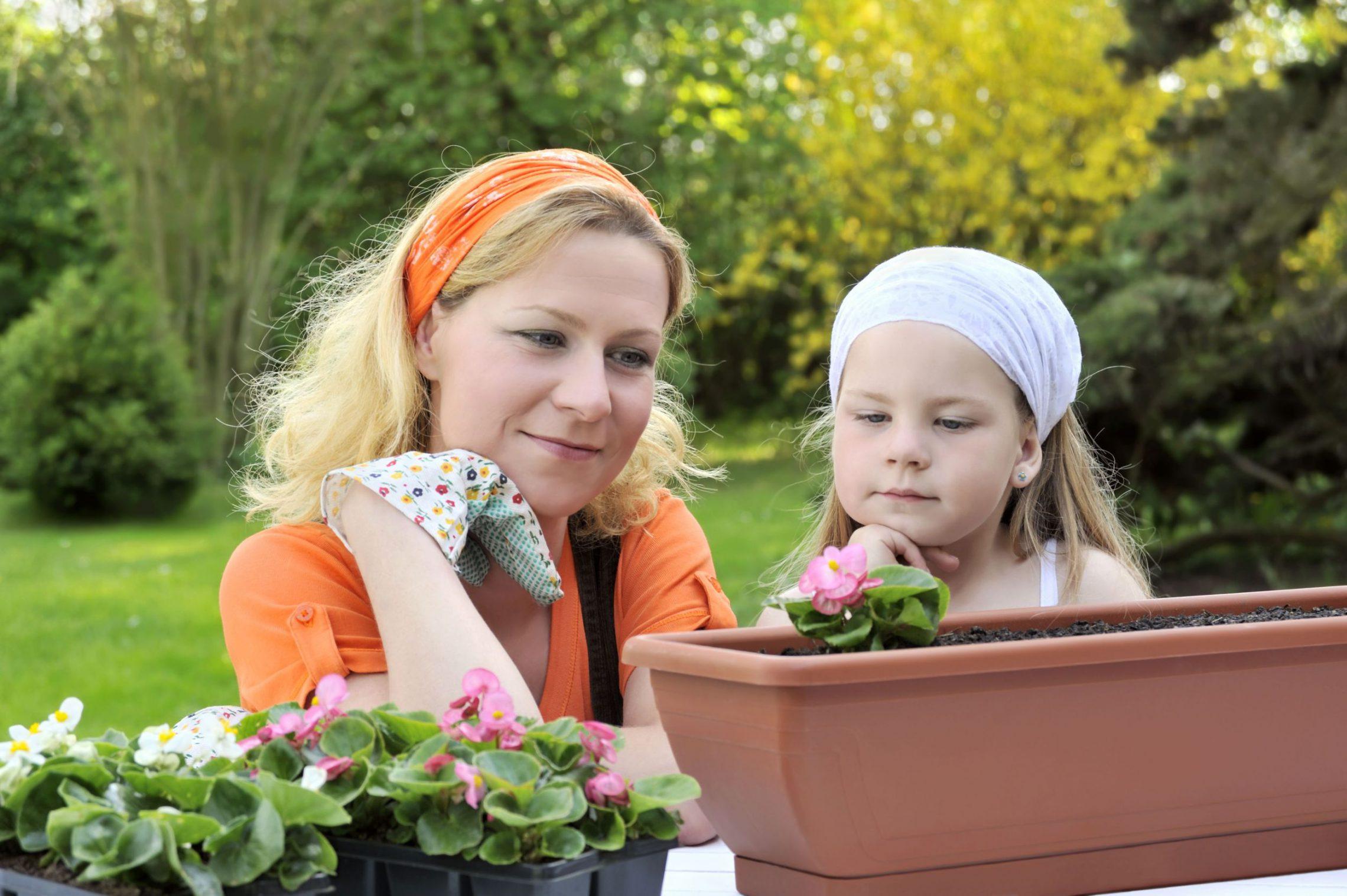 Wiosna w ogrodzie - cięcie krzewów i drzew owocowych