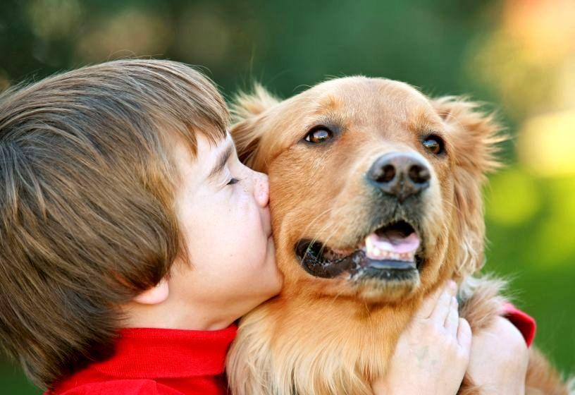 Wakacje z dziećmi: zabawy ze zwierzętami