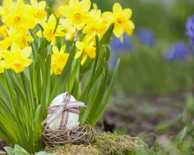 Wielkanoc to początek!