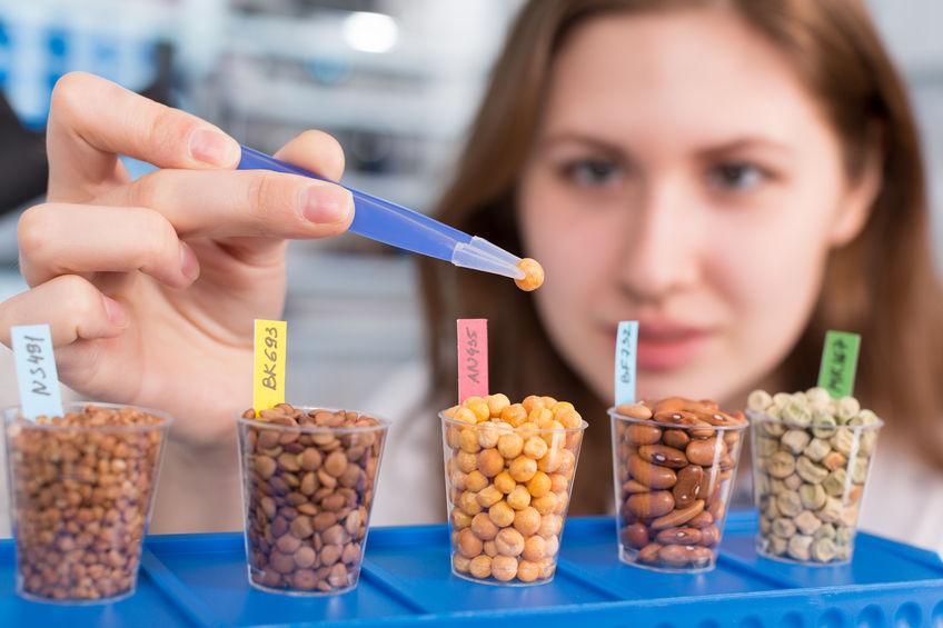 Dieta na bazie twojego DNA