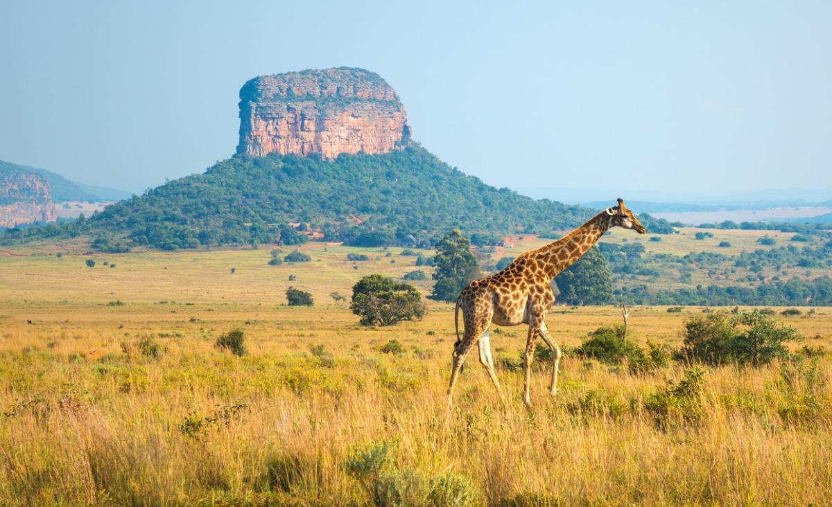 Afryka - miejsce dla szczęśliwych ludzi