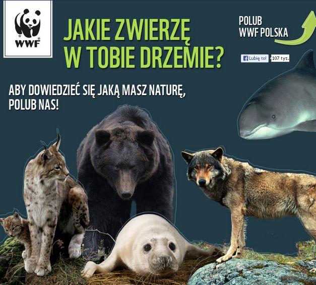 WWF_jakie_zwierze_w_tobie_drzemie