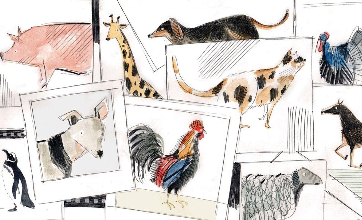 miłość i zwierzęta