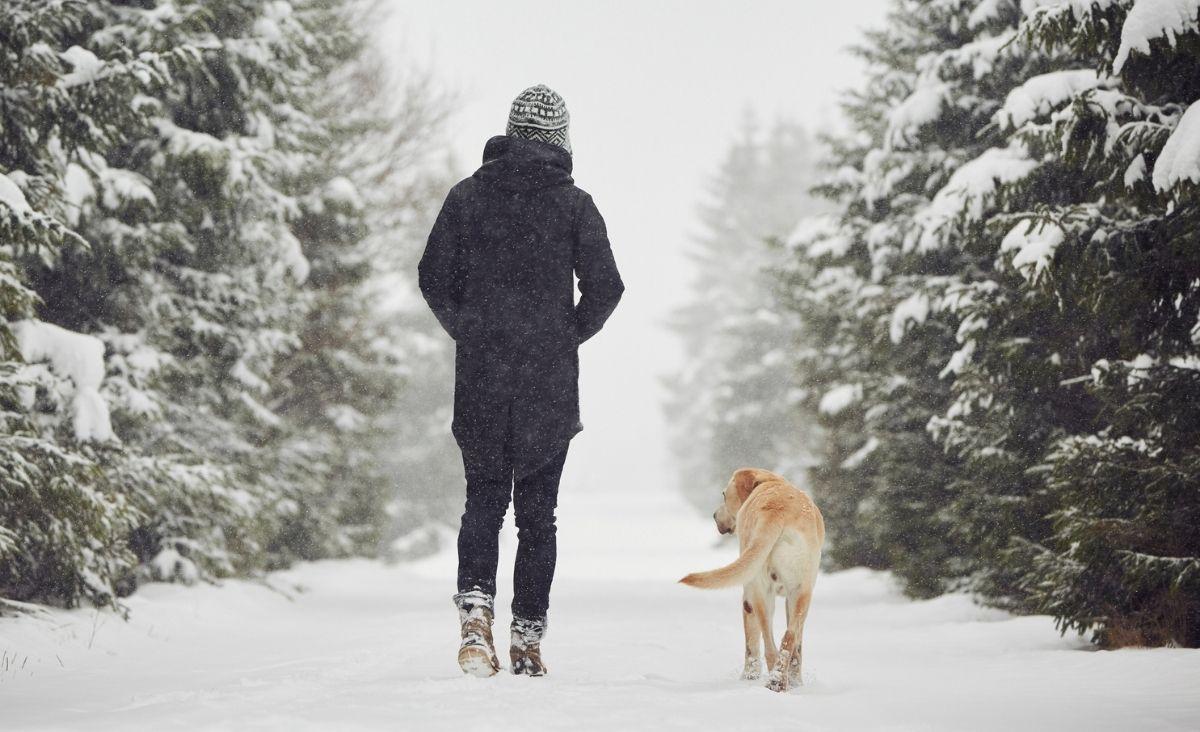 Dlaczego powinniśmy pokochać spacerowanie?