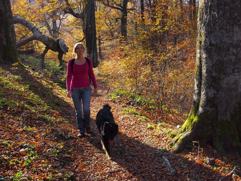 Zdrowe sposoby na jesienną odporność