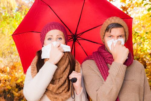 Jak korzystać z komunikatów dla alergików?