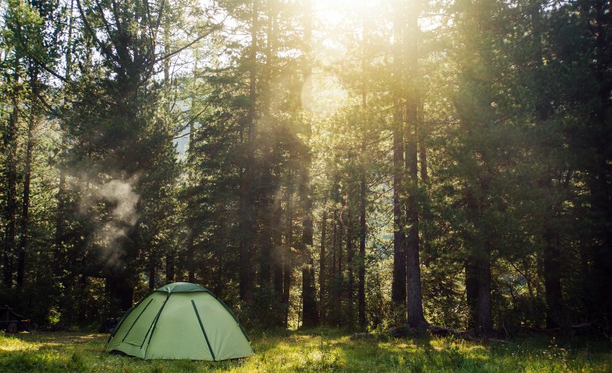 Jak wciąga las? O idei bushcraftingu rozmawiamy z Sylwią Graban