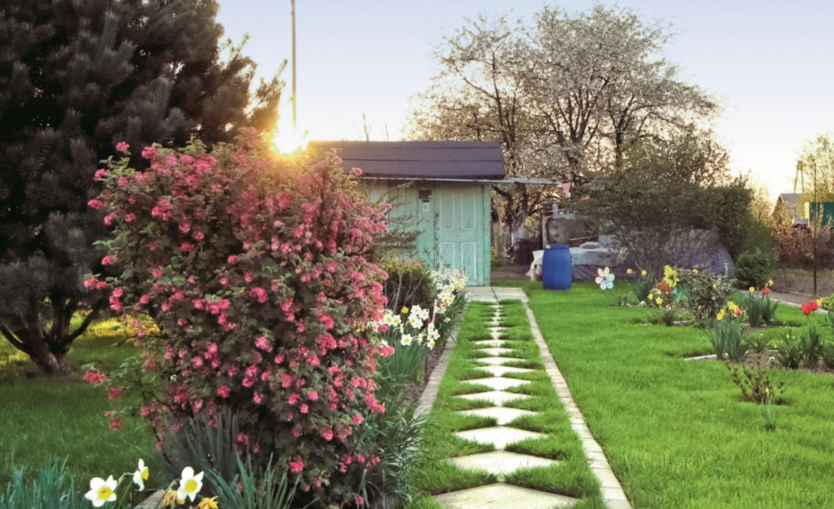 Reaktywacja ogródków działkowych