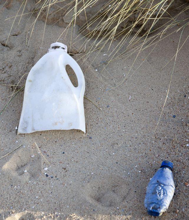Akcje ekologiczne nad Bałtykiem