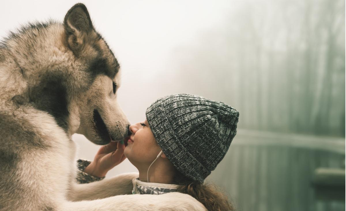 Przegląd najciekawszych terapii z udziałem zwierząt
