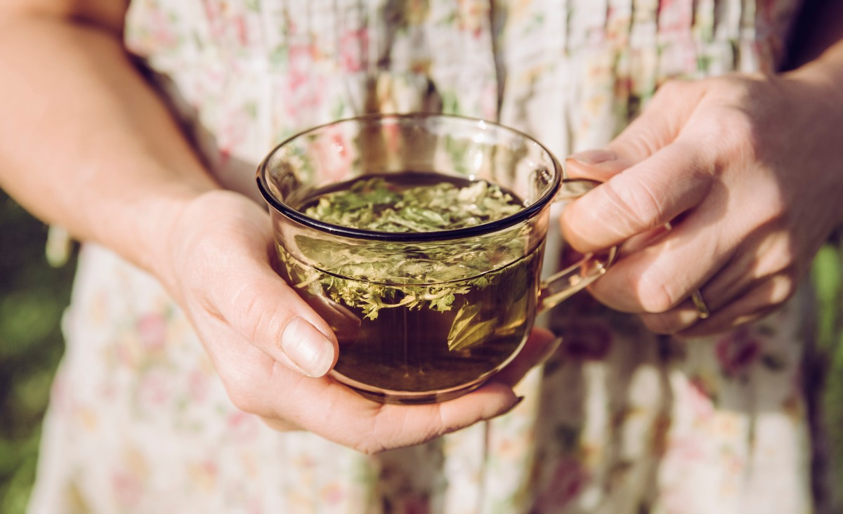 Pokrzywa zamiast kawy: Jakie zioła postawią cię na nogi?